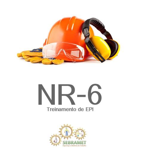 d258a6799a875 Atender a Norma Regulamentadora Seis (NR-6) do MTE que prevê a  obrigatoriedade da realização do treinamento para os funcionários que  utilizem qualquer tipo ...